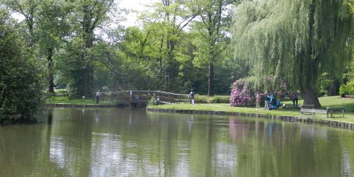 Streekpark de Kienehoef in het Brabantse Sint-Oedenrode