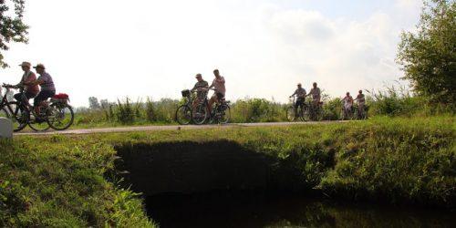 Heerlijk fietsen door de mooie natuur van Sint-Oedenrode, de Kienehoef