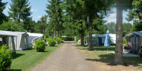 Kampeerplaatsen 211 tm 223, basiskampeerplaatsen op de Kienehoef