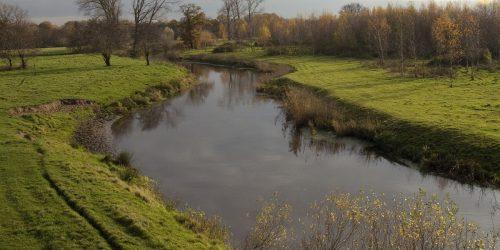 De Dommel Sint-Oedenrode nabij de Kienehoef