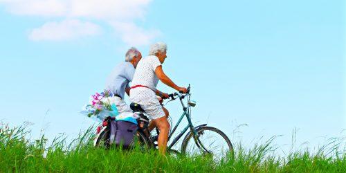 De Kienhoef ligt centraal en is daardoor gemakkelijk per fiets bereikbaar en een ideale startlocatie voor uitjes